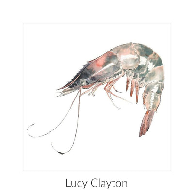 Lucy Clayton